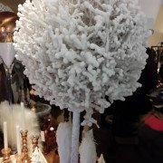 Kugelbaum beschneit